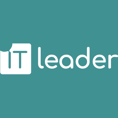 IT Leader - Audyty IT Poznań